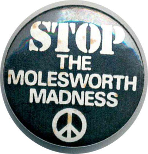Stop The Molesworth Madness Badges