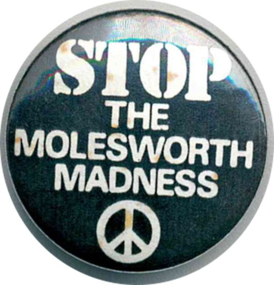 Stop The Molesworth Madness Badges